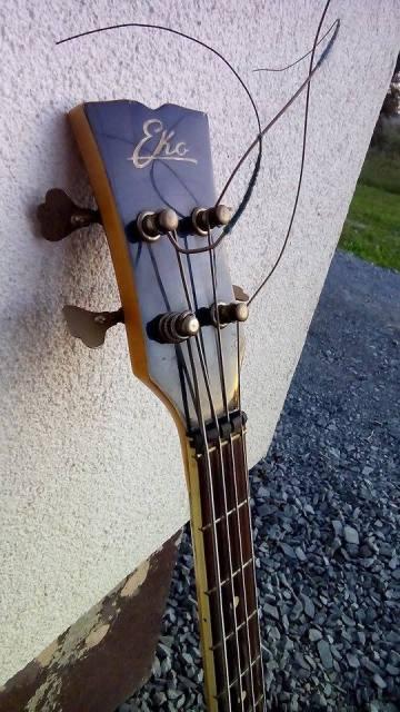 Eko Kiwi Bass. 2m6mhk10