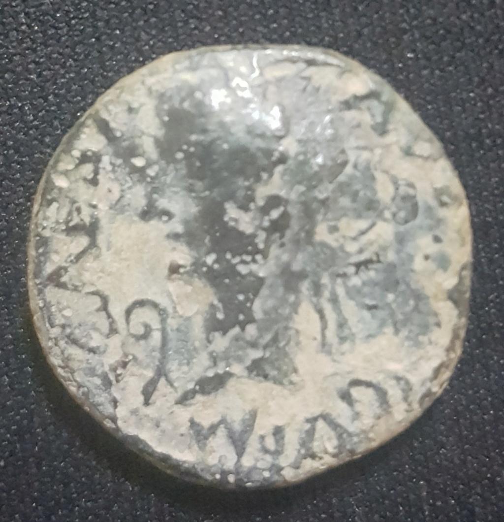Semis de Cartagonova, época de Tiberio. C CAESAR TI N QVINQ IN V I N K. Busto de Calígula. 20191110