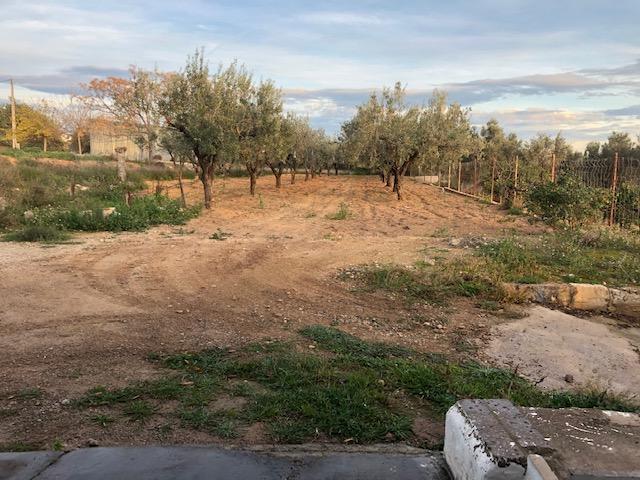 Me presento...RC16V (Valencia) Img_5111