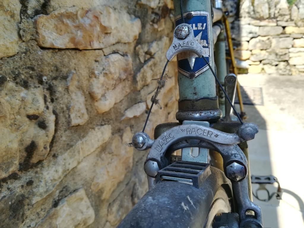 Randonneuse Cycle Geminiani  Img_2064