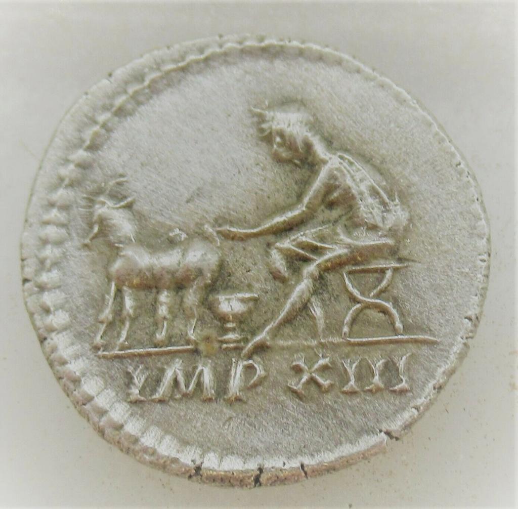 Denario de Tito. IMP XIII . Pastor ordeñando a oveja a izq. Roma. Tito_112