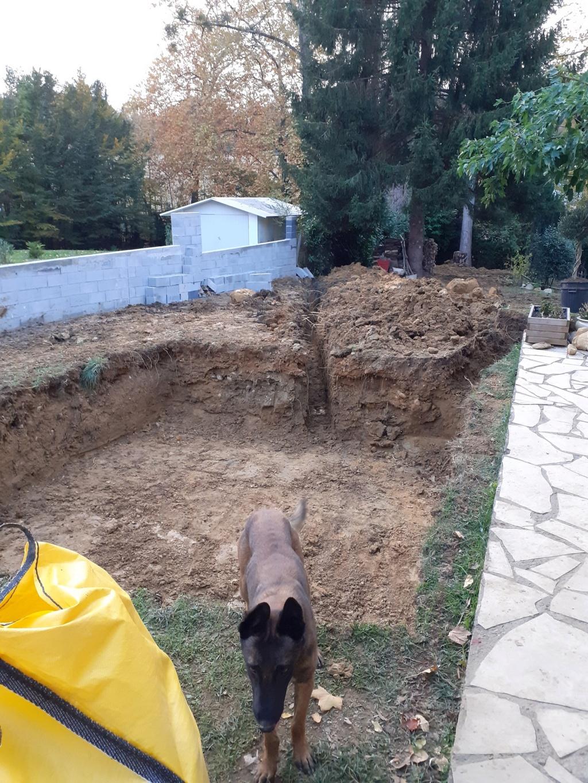 Commencement projet mini piscine LOLA Pisici11