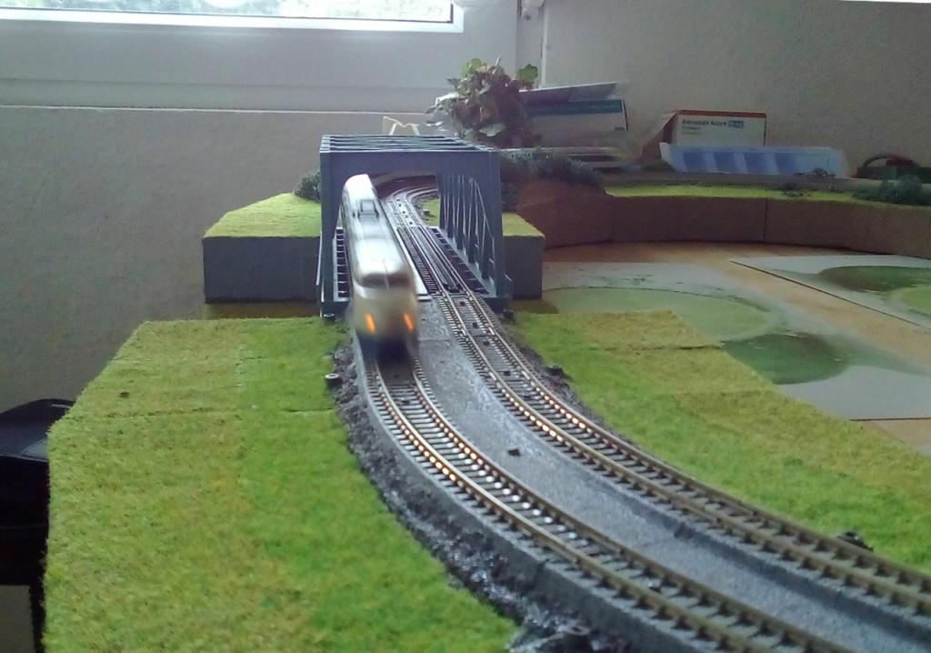 Wanni-san und seine Shinkansen (in Spur N) Shinka15
