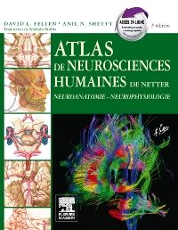 [neurologie]:Atlas de neurosciences humaines de Netter pdf gratuit  - Page 3 47046010