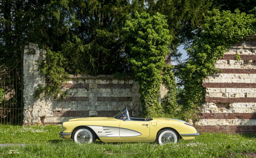 '58 Panama Yellow  Dsc02515