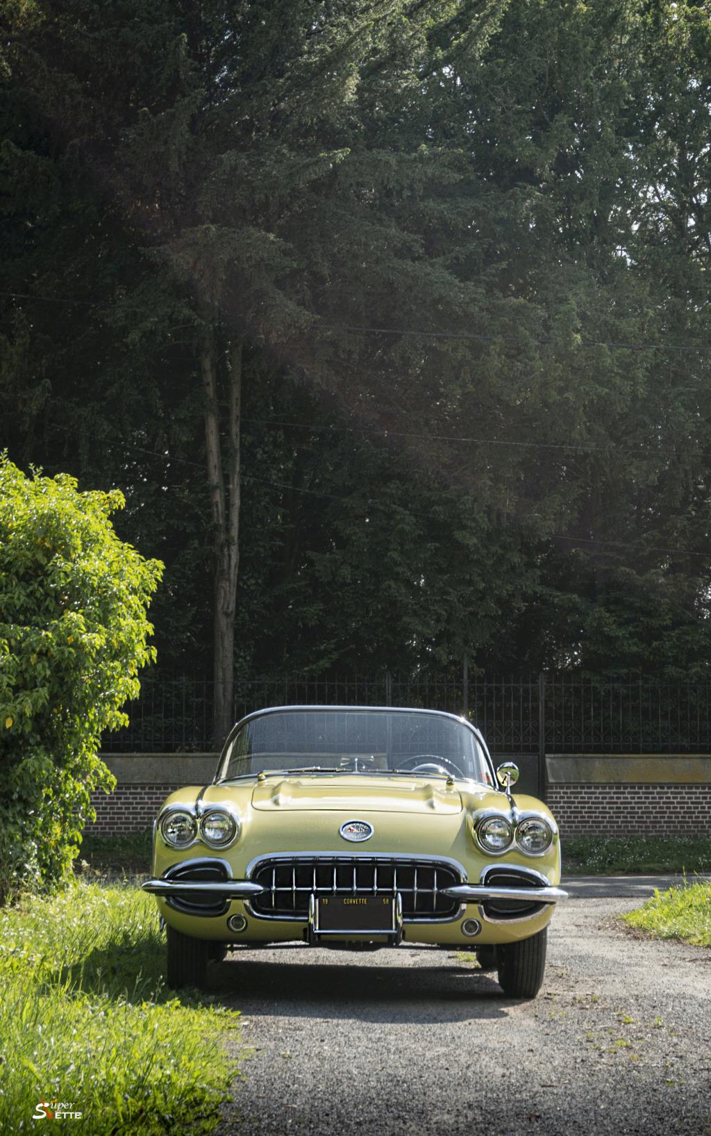 '58 Panama Yellow  Dsc02516