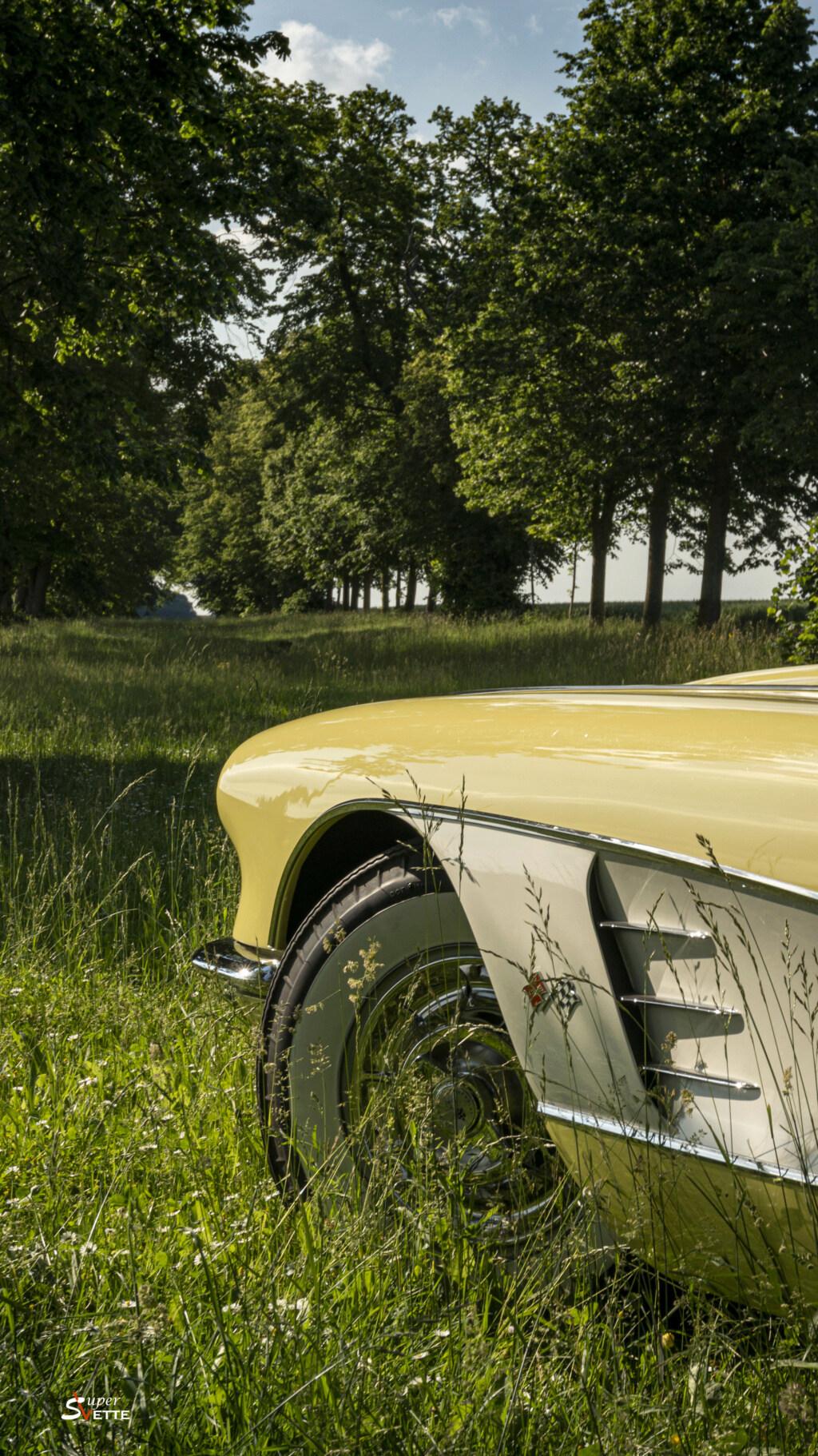 '58 Panama Yellow  Dsc02610