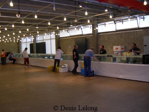 Photos de la bourse d'arlon Arlon_12