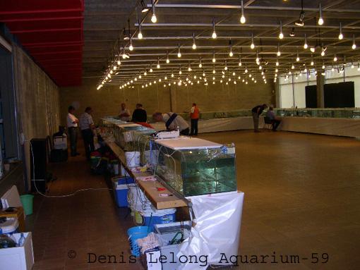 Photos de la bourse d'arlon Arlon_18