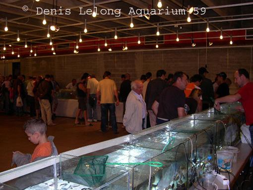 Photos de la bourse d'arlon Arlon_26