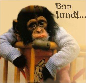lundi 28 janvier 2013 Bon-lu10