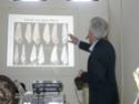 première journée d'études malacologici Pontini Enzo_c11