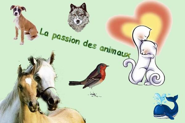 La passion des animaux