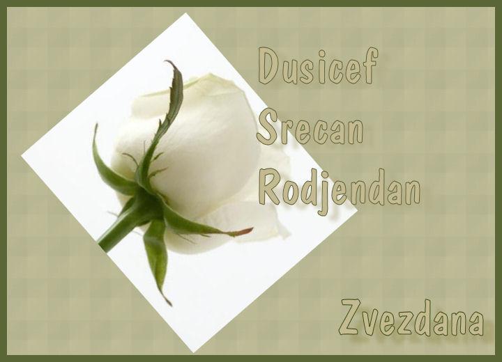 Sreæan roðendan Dusicaf Dusica11