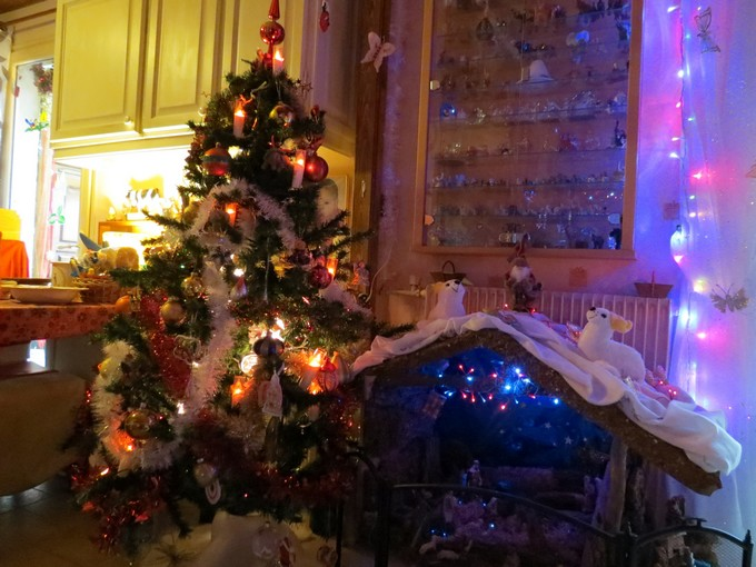 sapin de Noël  Img_0119
