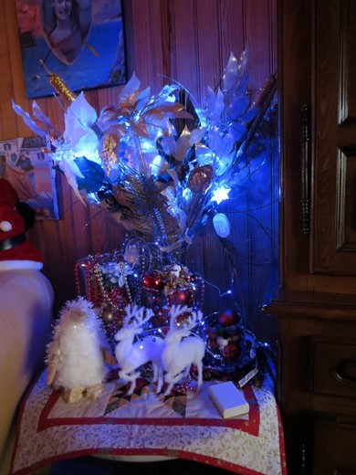 sapin de Noël  Img_0126