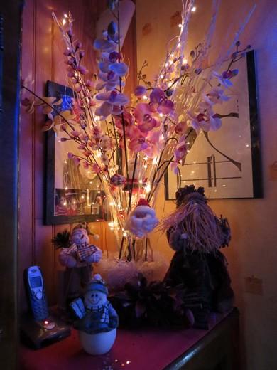 sapin de Noël  Img_0127