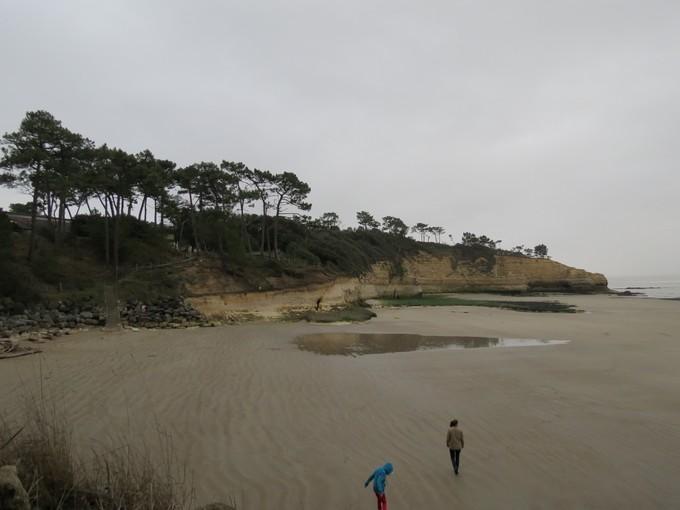 plage de l'arnéche (charente maritime) Img_0410