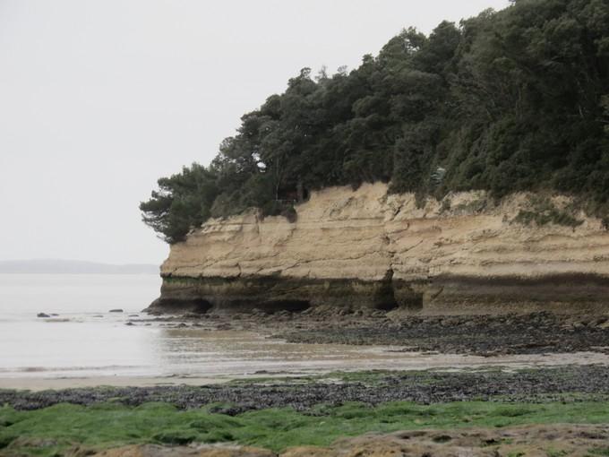 plage de l'arnéche (charente maritime) Img_0411