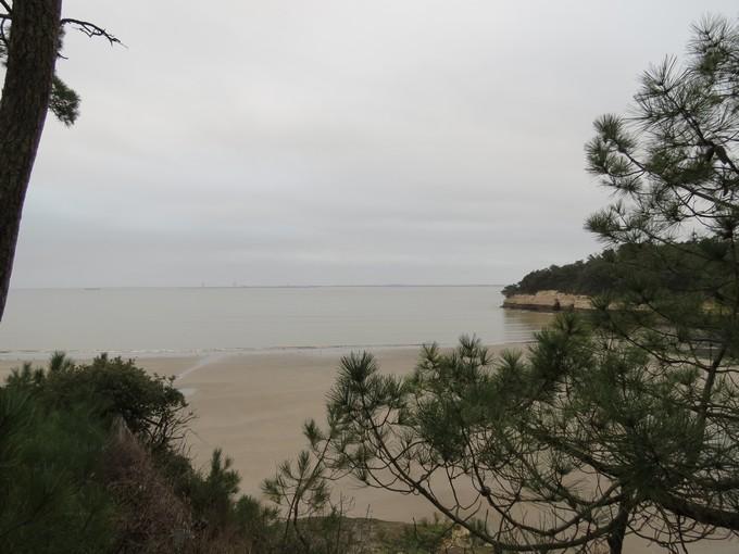plage de l'arnéche (charente maritime) Img_0512