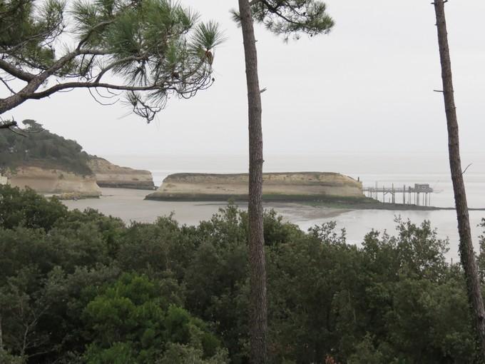 plage de l'arnéche (charente maritime) Img_0513