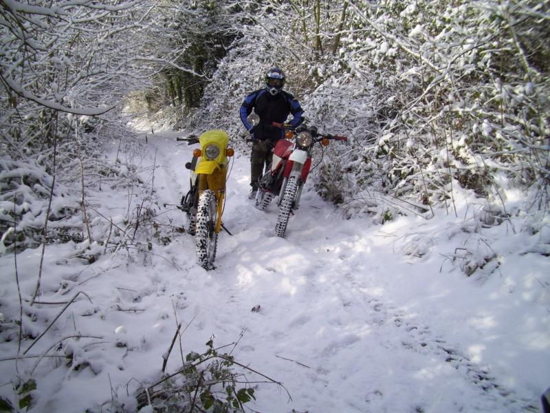 Sortie dans la neige 100_1910