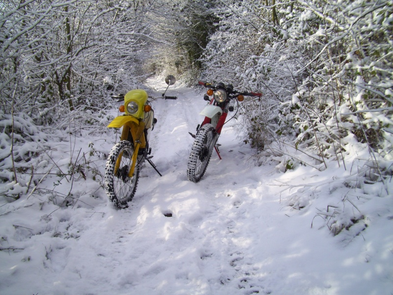 Sortie dans la neige 100_1911