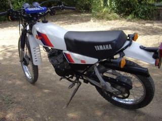 DTMX 125cc Membres / Mod. 1981 Intern10