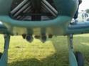 Messerschmitt Bf108 Photo623