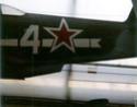Yaks à Etampes Yak3b10