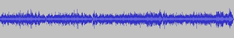 Bach - Sonates et partitas pour violon seul P14k10