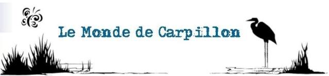 Le Monde de Carpillon: Capitaine Speci30 Bannie11