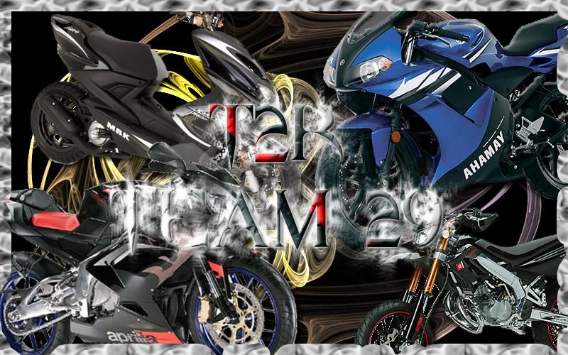 T2R team 29