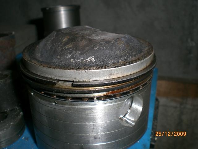 SEGMENTS Cimg3212