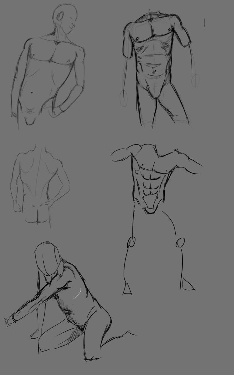 [defis] IM Training 1 - Page 3 Torse_10
