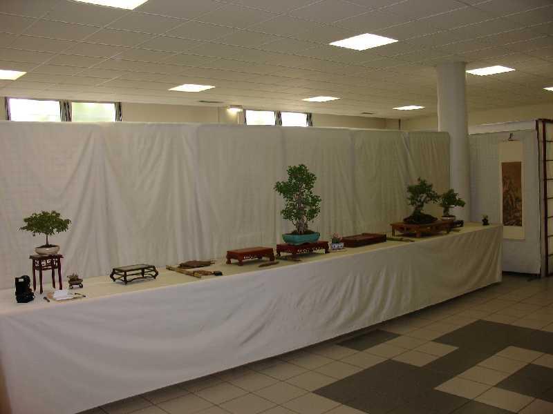 Exposition du Bonsaï Club du Lyonnais 2007 Dsc04210