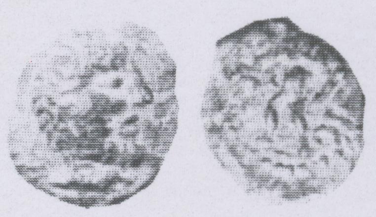 Bronce de SYRTICA Sextan10