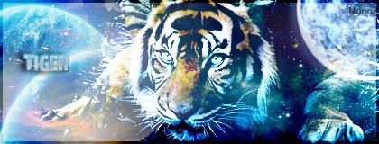 Scott graph's Tigre_10