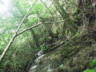 pêche à la barre dans le Cantal Montde10