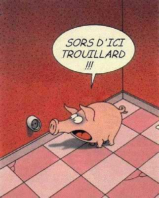 Humour - Page 3 Cochon10
