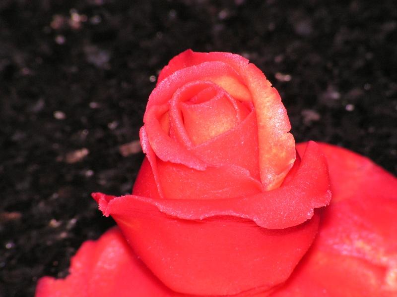 roses Gateau18