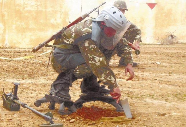 القوات البرية الجزائرية Http_w10