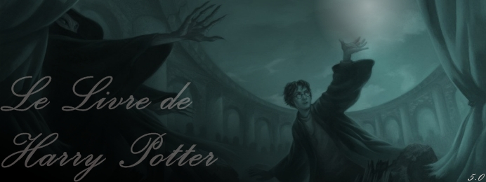 Le Livre de Harry Potter
