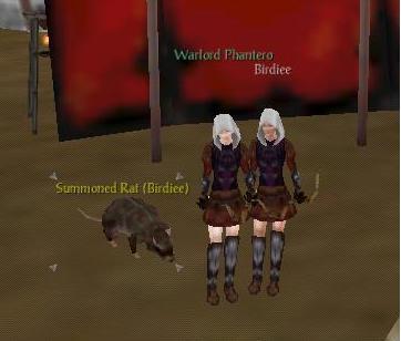 Birdee's Rat Sister12
