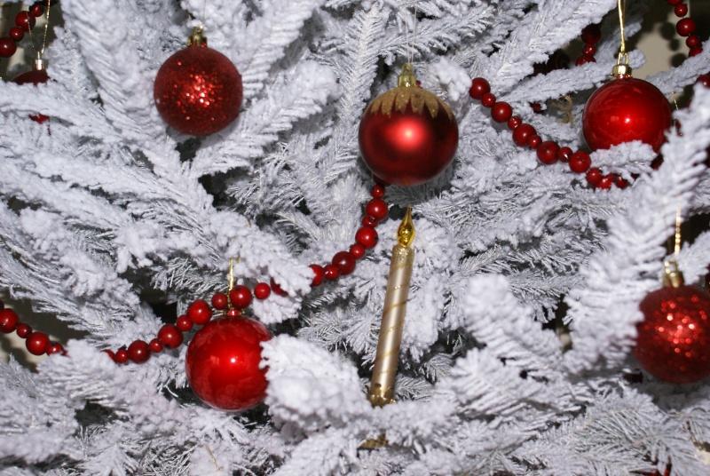 sapin de Noël  - Page 2 Noel_014