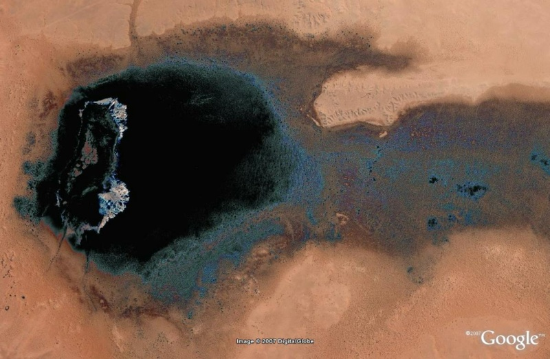 L'image du mois de février (une image par participant) - Page 3 Noir_210