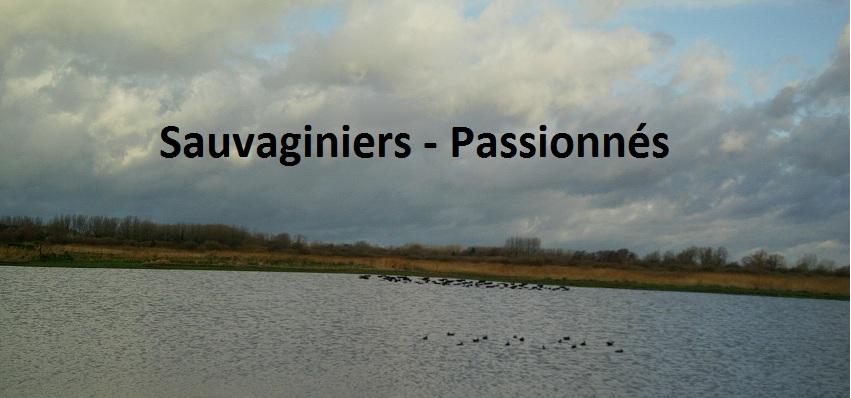 sauvaginiers-passionnés