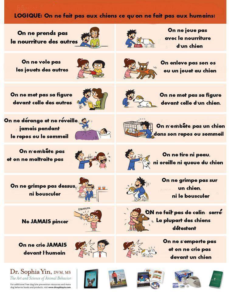 Des chiens et des enfants - Page 2 Affich10