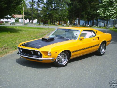 Ford Mustang 83_12_10