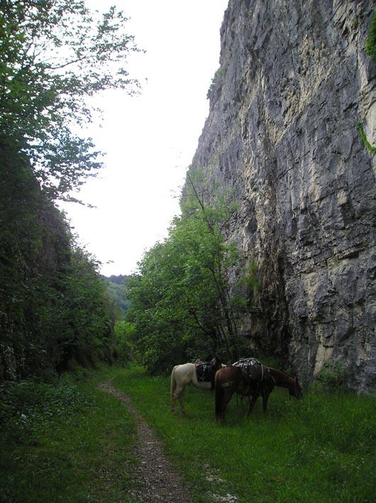 3 semaines dans le Jura / Doubs / Ain 05-roc10